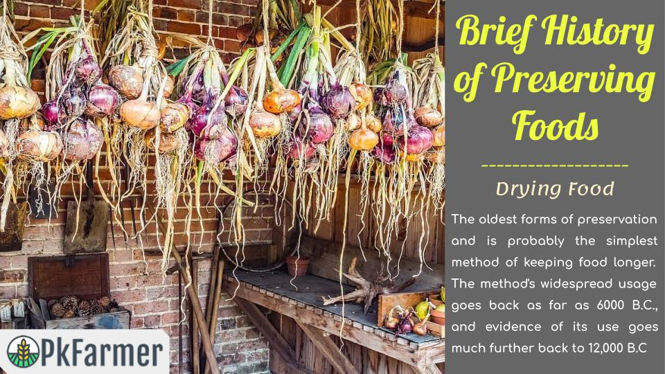 Brief History of Preserving Foods - Drying Food