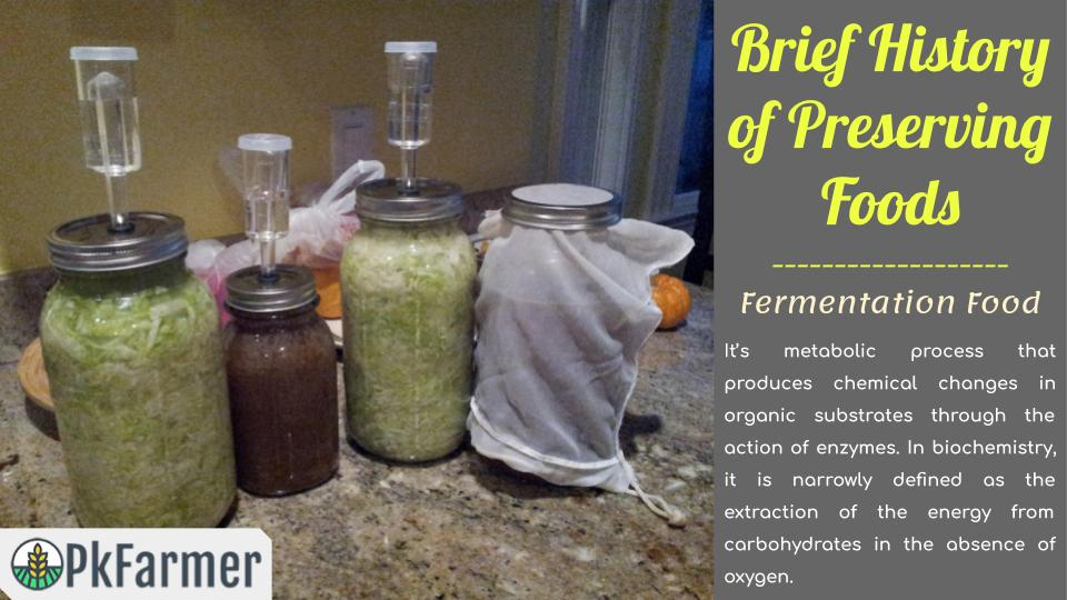 Brief History of Preserving Foods - Fermentation Food