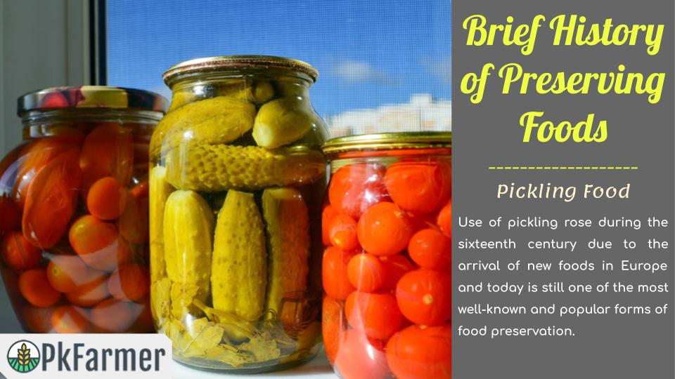 Brief History of Preserving Foods - Pickling Food
