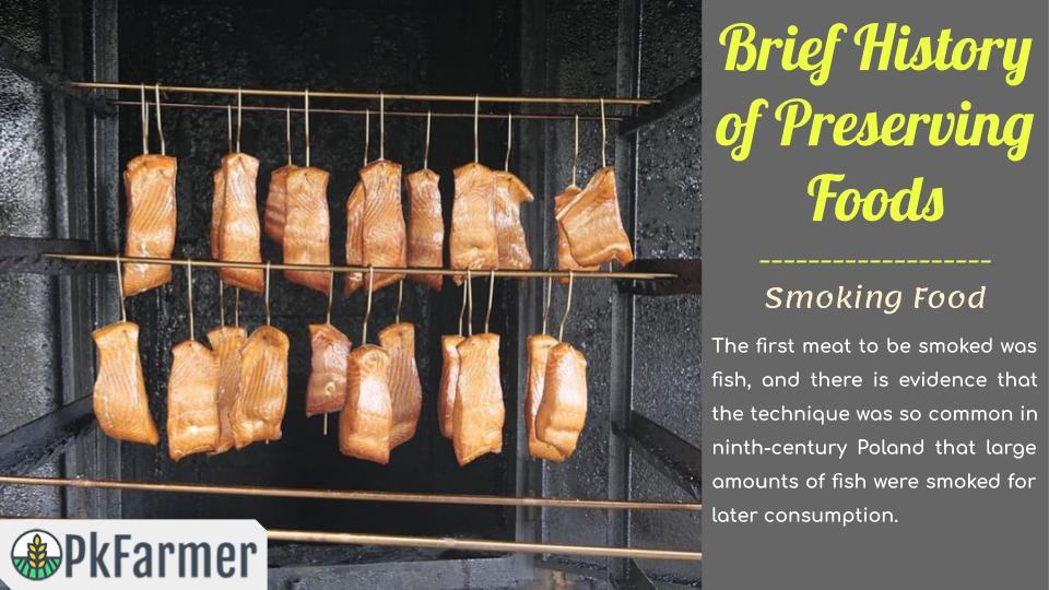 Brief History of Preserving Foods - Smoking Food
