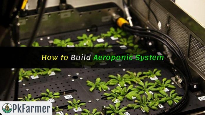 How to Build Aeroponic System