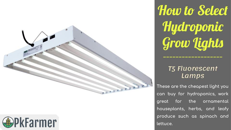 How to Select Hydroponic Grow Lights - T5 Fluorescent Lamps
