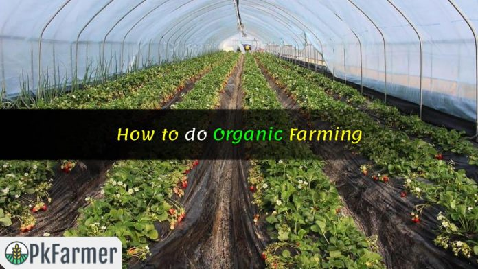 How to do Organic Farming