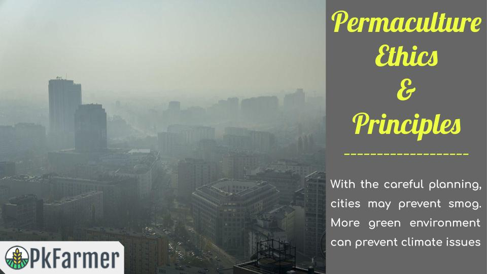With the careful planning, cities may prevent smog