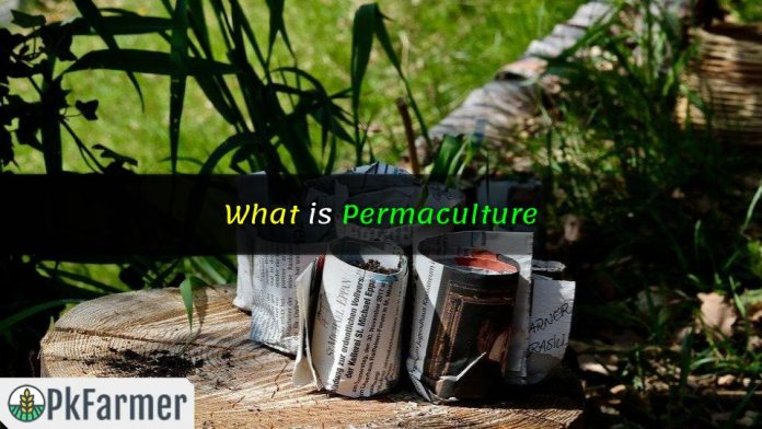 What is Permaculture