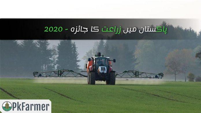پاکستان میں زراعت کا جائزہ
