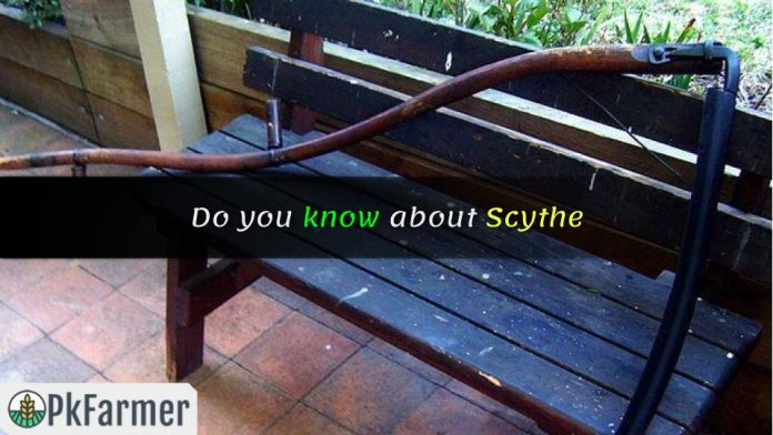 Do you know about Scythe